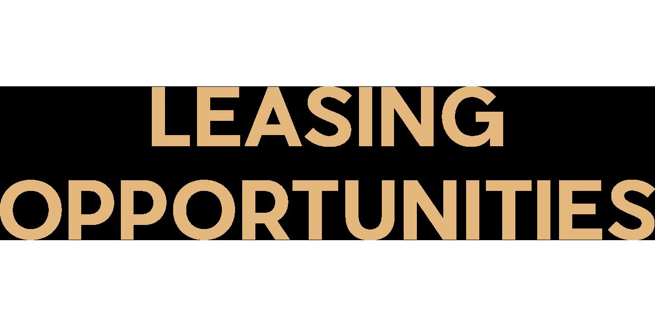 Leasing Opportunities