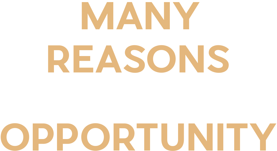 Many Reasons One Opportunity